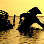 Silhouetted man fishes at sunset