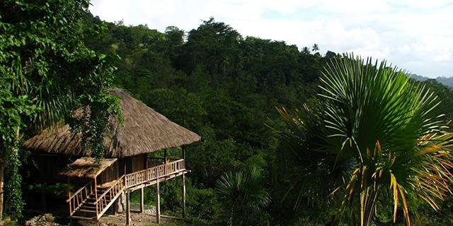 Timor Leste image