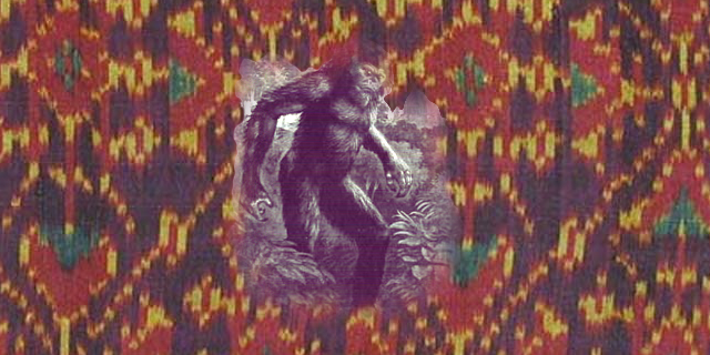 junglegirlandthewildman