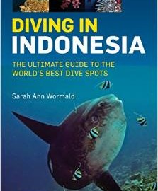 Diving_Indonesia