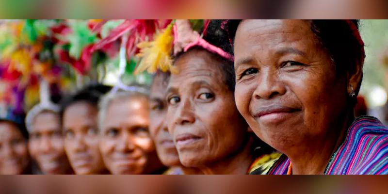 flas timorlestewomen - FLAS Funding for 2018-2022 Secured