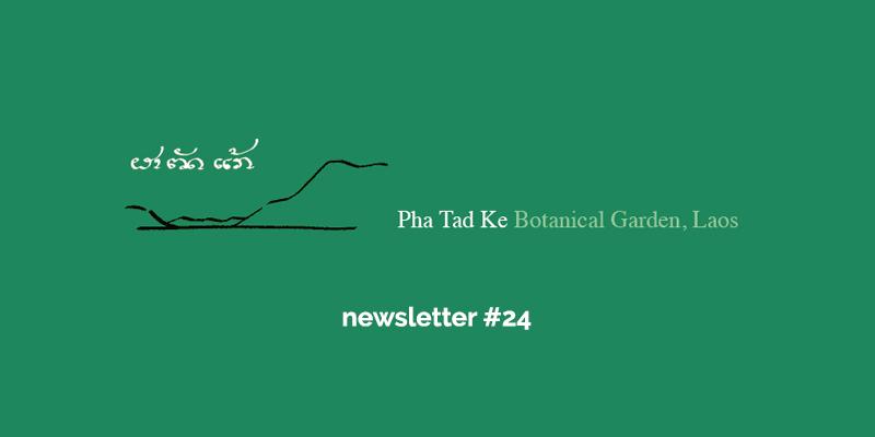 Pha Tad Ke Botanical Garden Newsletter #24