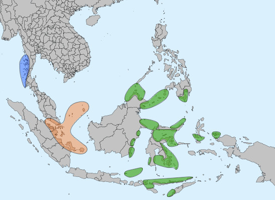 """Distribution of three different peoples referred to generally as """"Sea Nomads"""" Blue: Moken, Orange: Orang Laut, Green: Sama-Bajau. Blue - West coast of lower Myanmar; orange - the coasts between Malaysia and Indonesia; green - various coasts between East Indonesia and the Southern Philippines."""